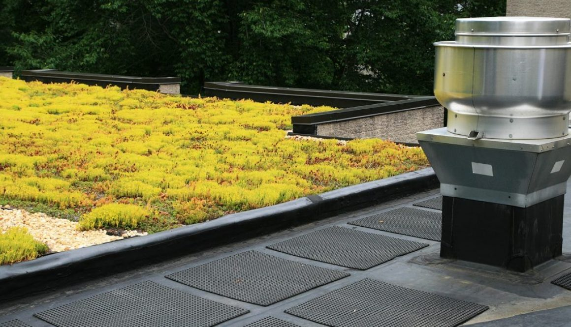 Partial-Green-Roof